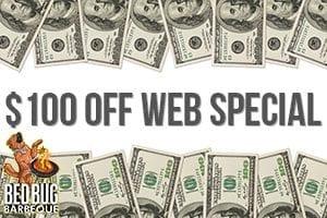 100-web-special