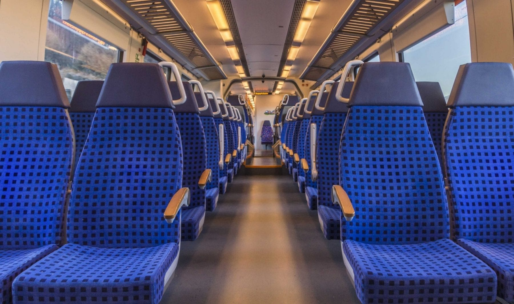 Train seating becomes hiding place for bed bugs