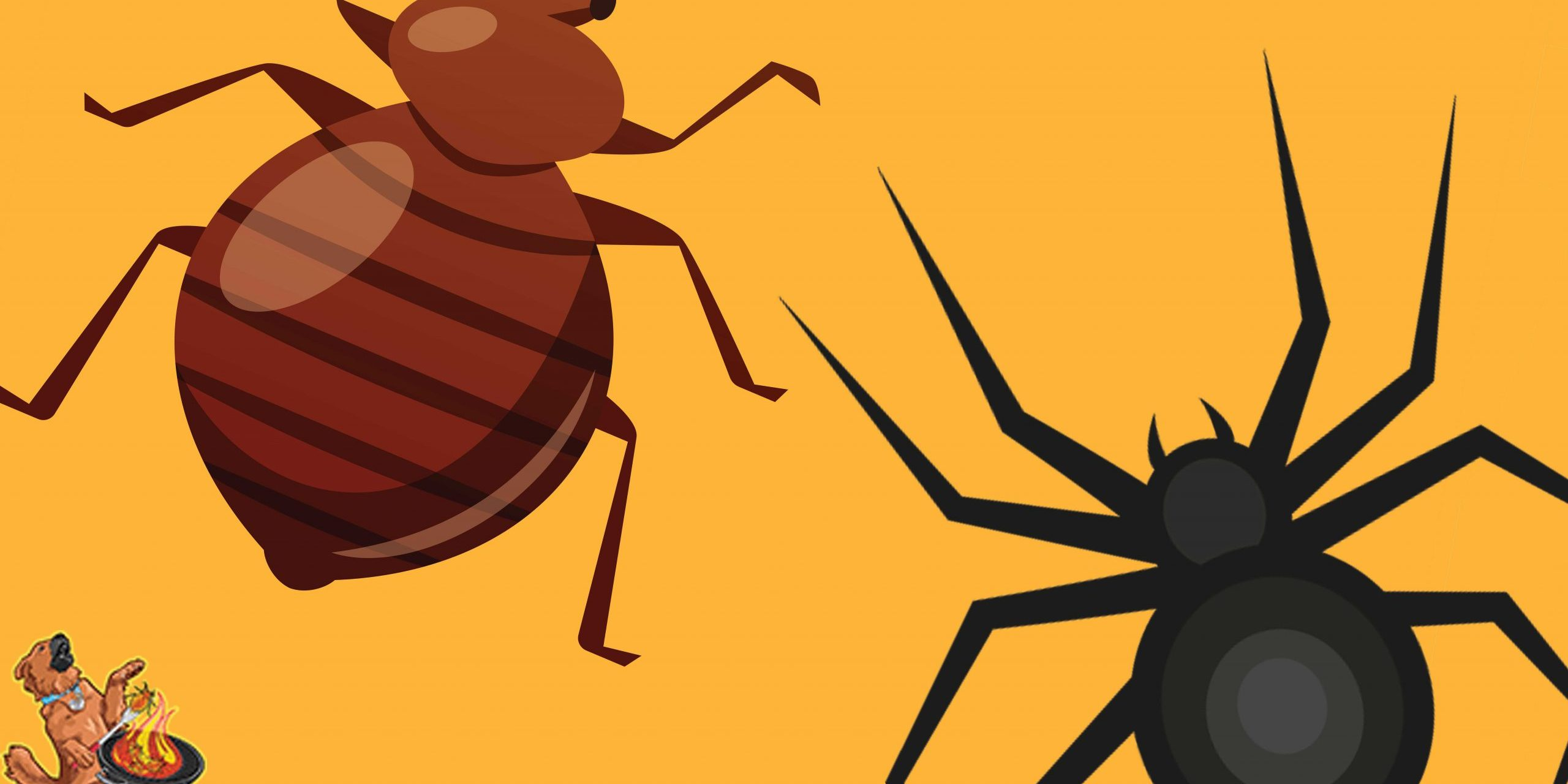 bed bug removal cleveland ohio