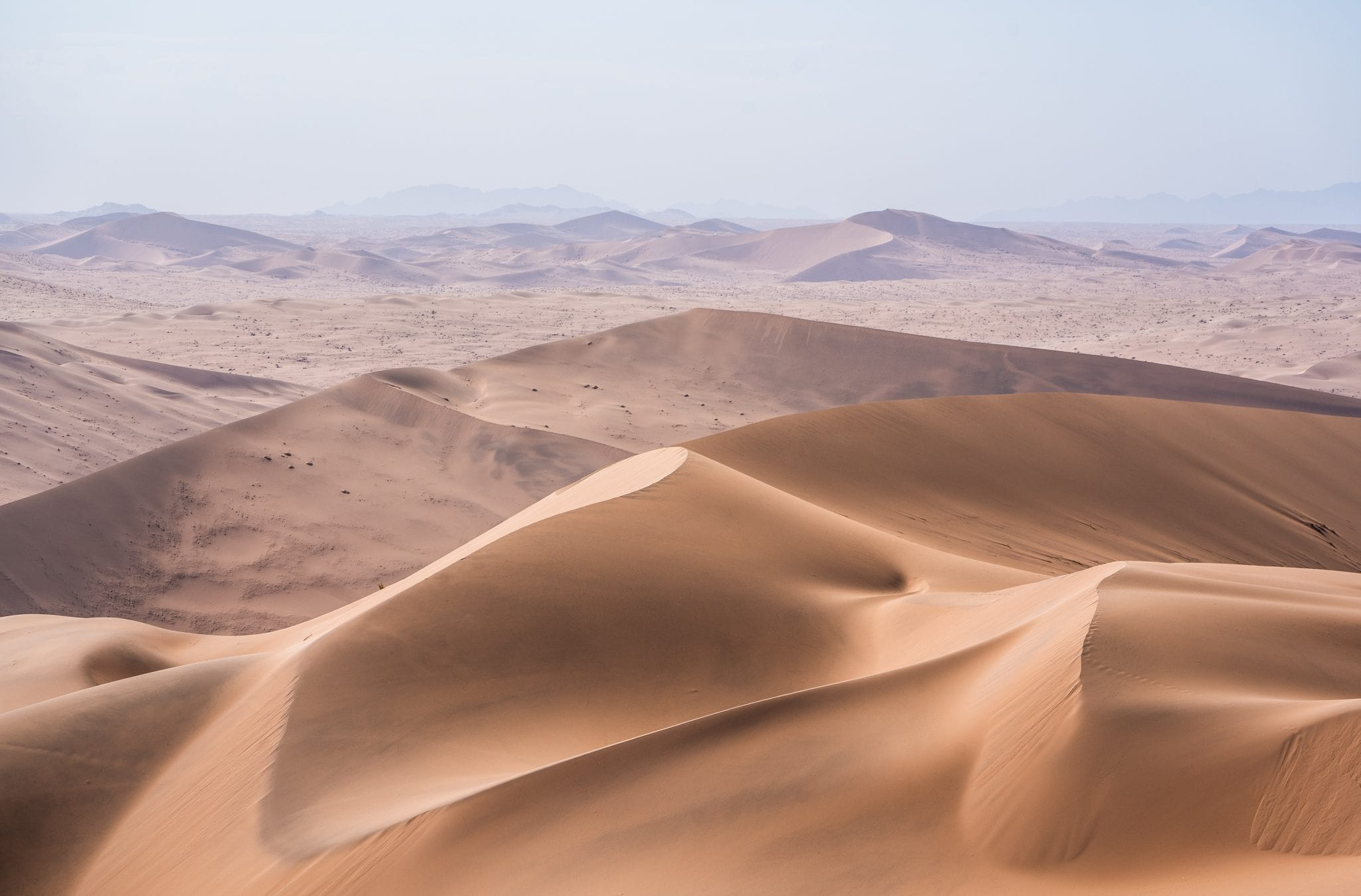 A dry, sandy desert that represents the feeling that a bed bug infestation would feel during heat treatment.
