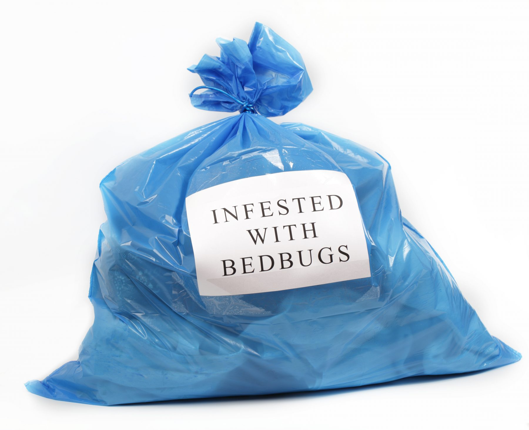 """Blue plastic bag with paper sign """"Infested with Bed Bugs"""""""